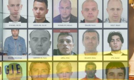 Les grands types de délinquants