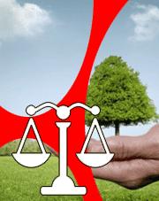Droit pénal de l'environnement